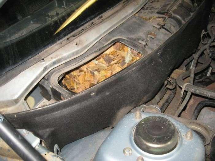 Причини деяких поломок автомобілів (11 фото)