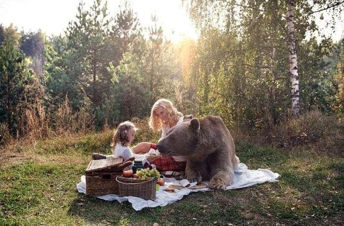 Фотосет пікніка з ведмедем шокував зарубіжні ЗМІ і користувачів мережі (16 фото + відео)