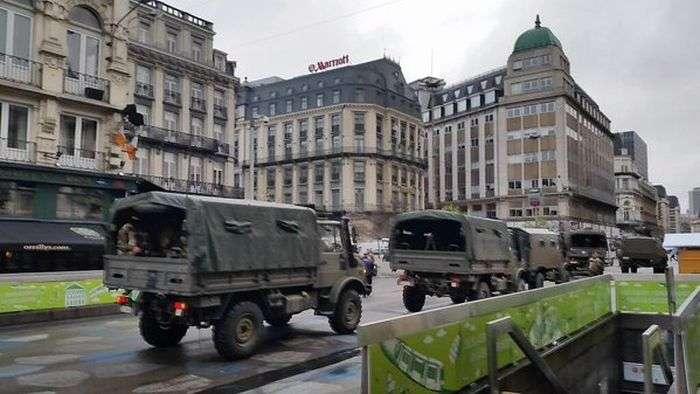 Замість фотографій антитерористичної операції в Брюсселі почали публікувати фото з котами (21 фото)