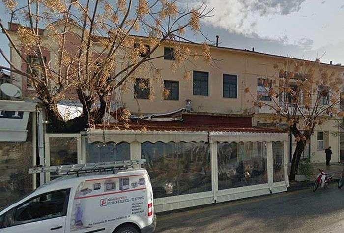 У грецькому місті Мітіліні собакам дозволяють спати прямо в кавярні (3 фото)