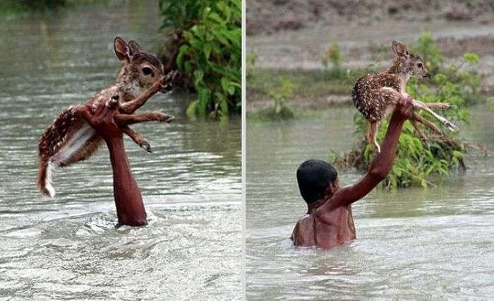 Добрі вчинки, які зробили наш світ трішечки краще (12 фото)