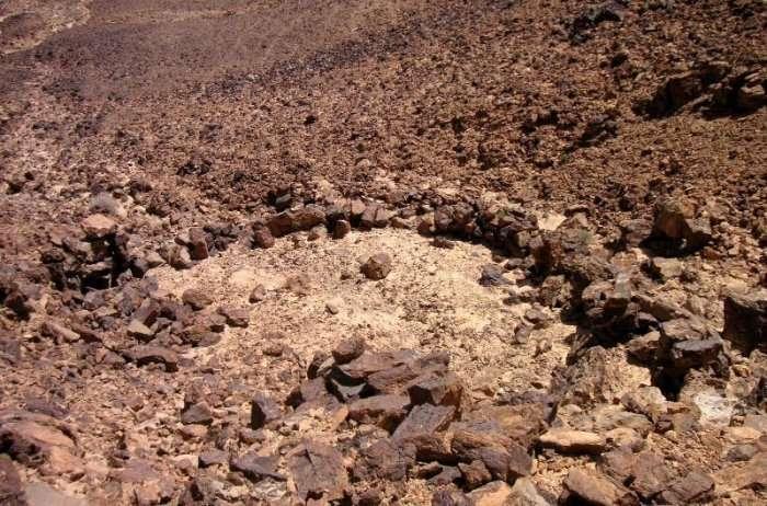 Пустельні «повітряні змії» на Близькому Сході (6 фото)
