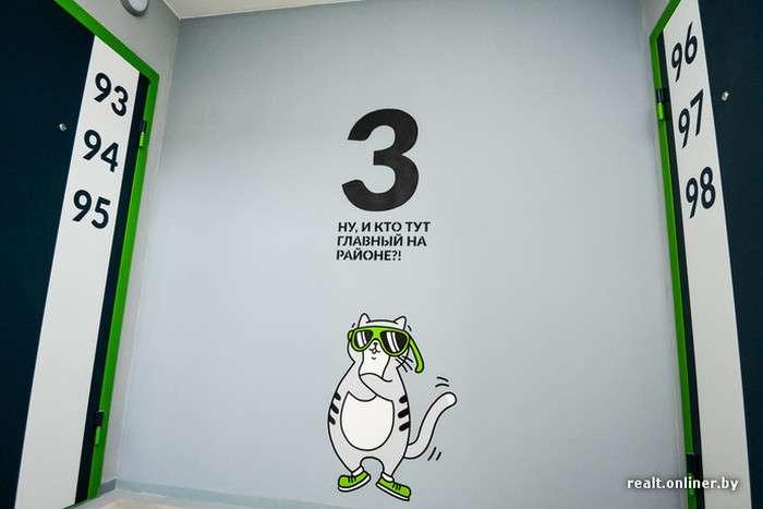 На стінах підїздів білоруської новобудови «оселився» кумедний кіт по кличці Борис (21 фото)