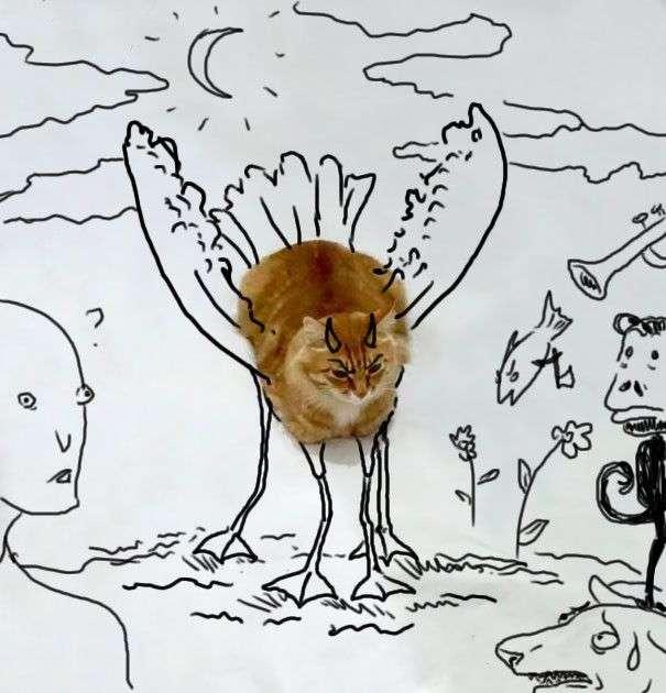 Новий тест на визначення творчих здібностей з фотографією кота (31 малюнок)