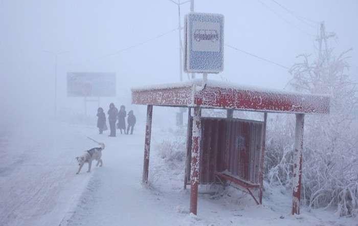 Як живеться мешканцям села Оймякон (21 фото)