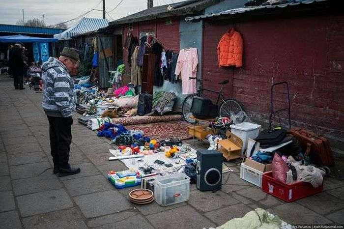 Західний світ очима ідеалістів (58 фото)