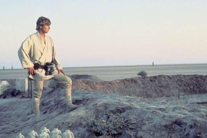 У Лос-Анджелесі відбулася головна премєра 7-го епізоду «Зоряні війни: Пробудження Сили» (22 фото)