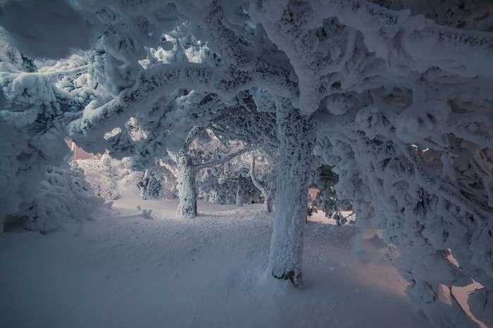 Зимові пейзажі Пятигорська (12 фото)