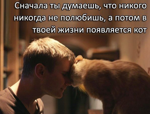 Юмор про любовь Юмор