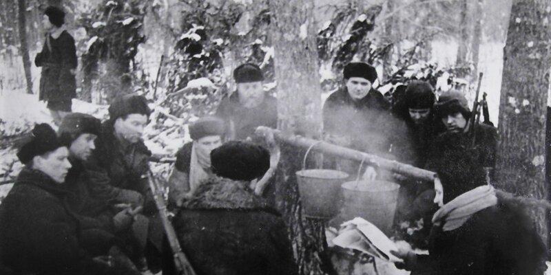 Клятва чести и мужества: рассекречены документы о подмосковном партизанском движении История,ссср