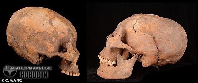 Самые древние в мире вытянутые черепа обнаружили в Китае Тайны и мифы