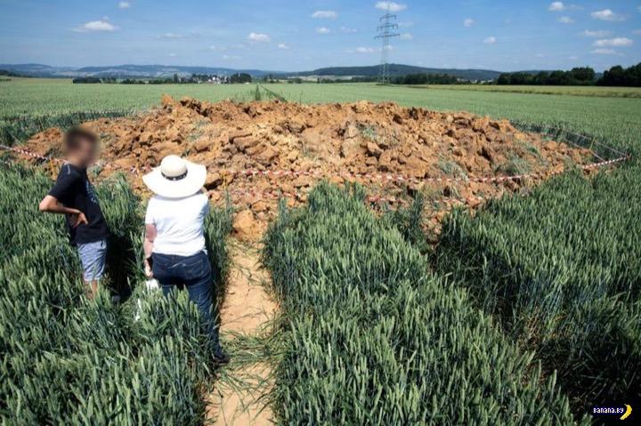 Эхо войны в кукурузном поле Интересное