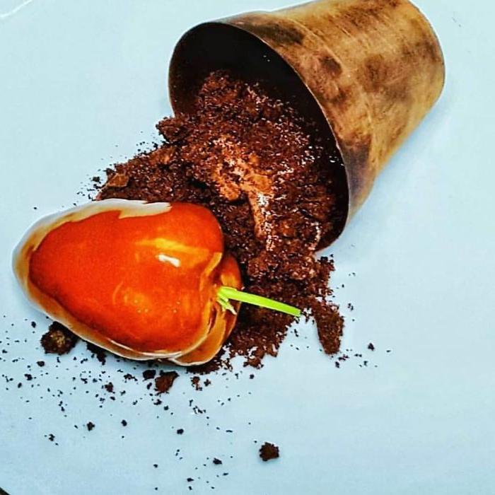Шоколадные окурки, гнилое яблоко с заварным кремом, мороженое со стеклом и землей: повар создает вкусные десерты, похожие на мусор Интересное