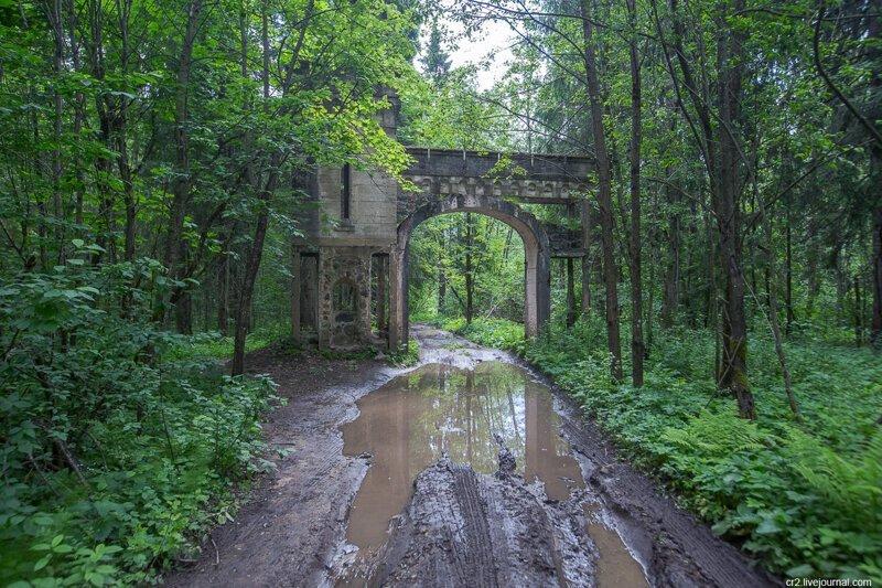 Новгородская область. Усадьба Заветное — остатки «малого Версаля» посреди леса   Интересное