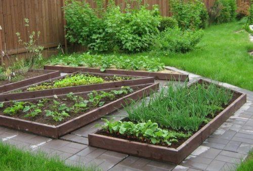 Красиво и удобно: ограждения для грядок своими руками дача,инструмент,ландшафтный дизайн,огород,полезные советы,растения,сад,строительство,стройматериалы