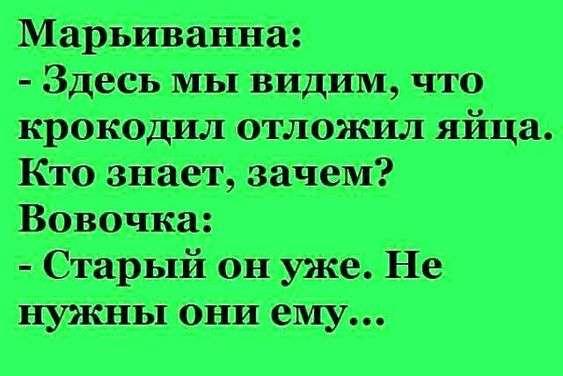 На въезде в Одессу патрульный останавливает авто: - Почему нарушаете?... Весёлые,прикольные и забавные фотки и картинки,А так же анекдоты и приятное общение