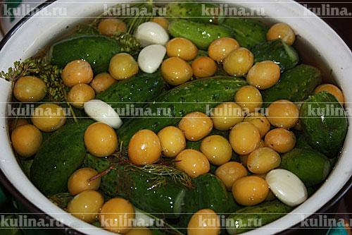 Огурцы малосольные с алычой заготовки,закуски,кулинария,малосольные огурцы