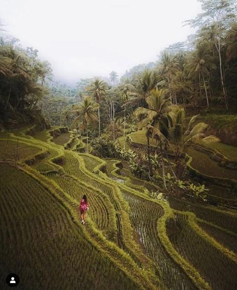 13 удивительных мест на Земле, где буйство красок удивляет!