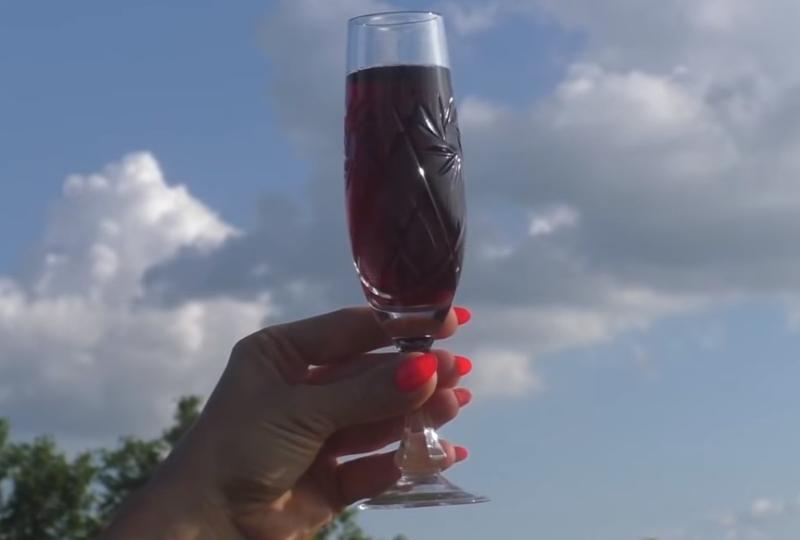 Домашнее вино из черной смородины куда лучше любых магазинных напитков! рецепты